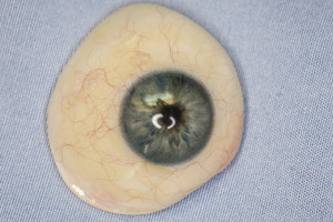 cleaning your artificial eye