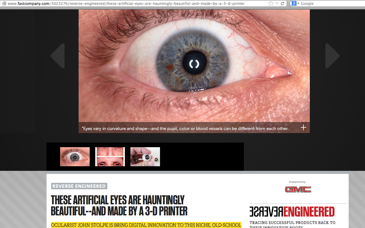 John Stolpe Irises Unlimited digital irises profiled in Fast Company Magazine