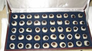 stock eyes prosthetic eye